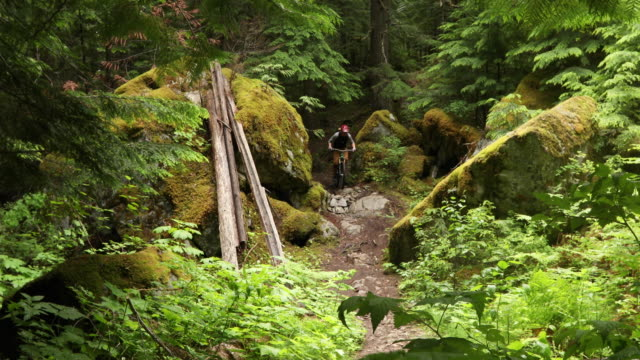 Mountain bike ascends rugged west coast forest trail