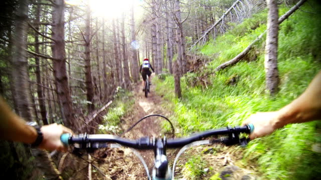 mountain bike video: una singola traccia nella foresta - andare in mountain bike video stock e b–roll