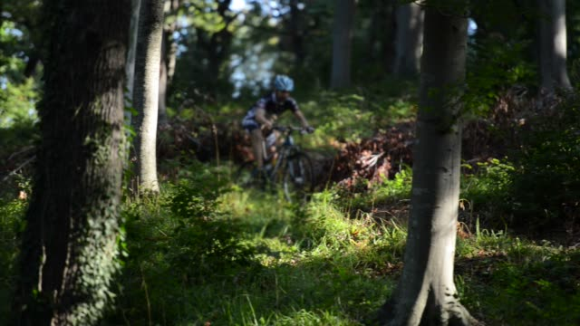 mountain bike - mountain biking stock videos & royalty-free footage