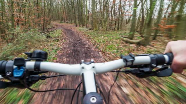 POV Mountain Bike