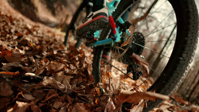 slo mo mountain bike wheel moving through leaves in the forest - mountain bike stock videos & royalty-free footage