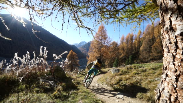 Mountain biker ascend alpine trail