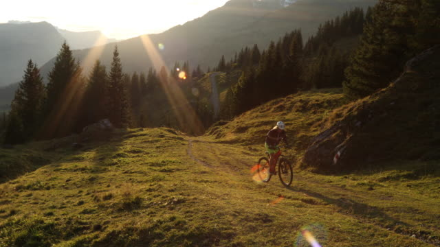 Mountain biker ascends trail through alpine meadow, mountains