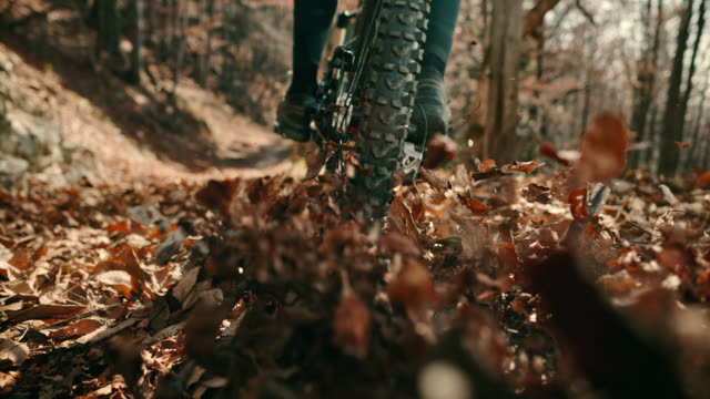 speed ramp mountain biker causing leaves to fly into the air on the forest trail - mountain bike video stock e b–roll