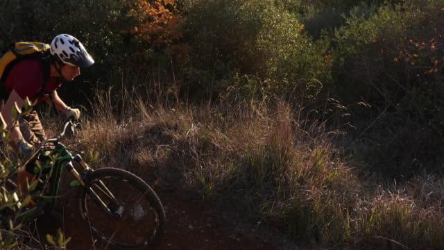 Mountain biker cranks along forest trail at sunrise