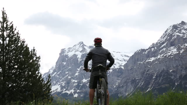 Mountain biker cycles snow capped mountains