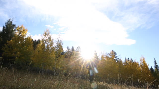 mountain biker cyles through meadow into autumn forest, sunrise - lockdown viewpoint stock videos & royalty-free footage