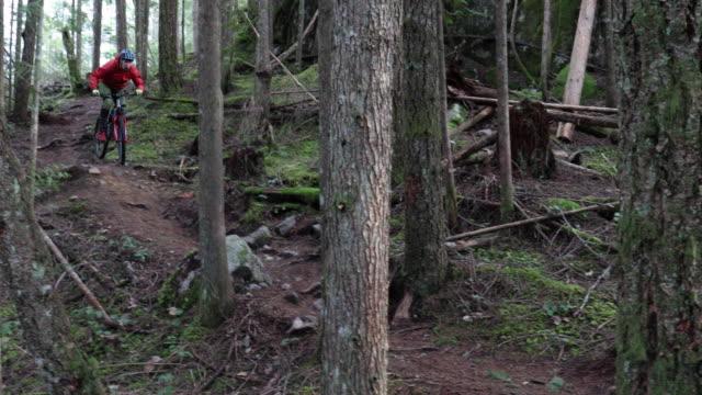 mountain biker descends forest trail in winter - mountain biking stock videos & royalty-free footage