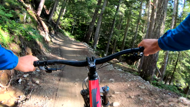 mountain biker descends forest trail with speed - mountain bike stock videos & royalty-free footage