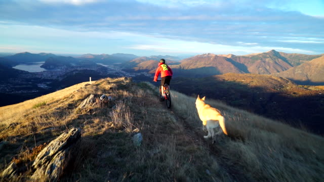 mountain biker descends mountain ridge at sunrise followed by dog - mountain bike stock videos & royalty-free footage