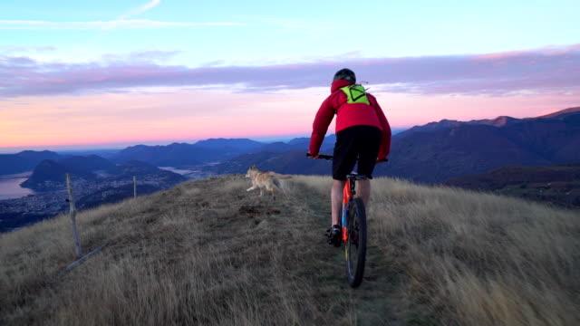 mountain biker descends mountain ridge at sunrise followed by dog - mountainbike stock-videos und b-roll-filmmaterial
