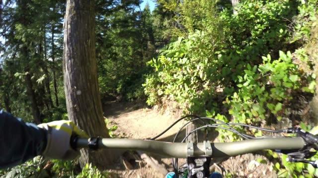 Mountain biker descends slope through forest