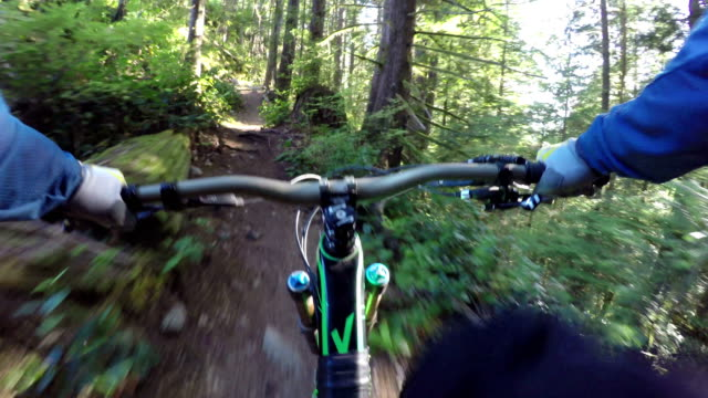 vidéos et rushes de mountain biker descends slope through forest - faire du vélo tout terrain