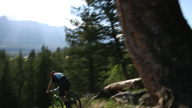Mountain biker descends steep slope, from treed ridge crest