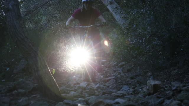 Mountain biker descends through forest tunnel, on path