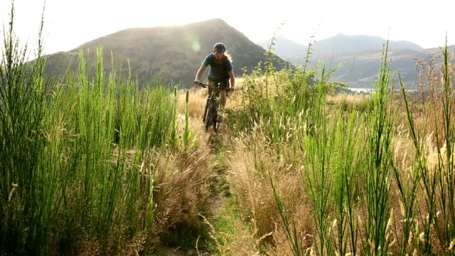 mountain biker follows trail through grasses, hills - mountain biking stock videos & royalty-free footage