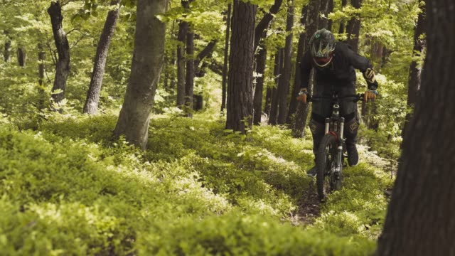 mountain biker in the woods - mountain bike stock videos and b-roll footage