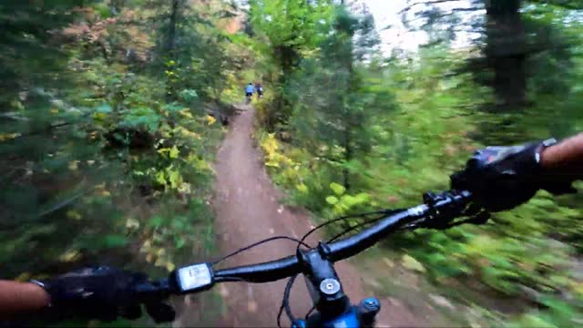 mountain biker in utah's wheeler canyon used a helmet camera to capture close-up footage of the region's vibrant fall colors,... - mountain biking stock videos & royalty-free footage