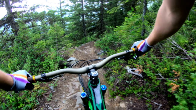 mountain biker point of view descending rugged west coast trail - mountain biking stock videos & royalty-free footage