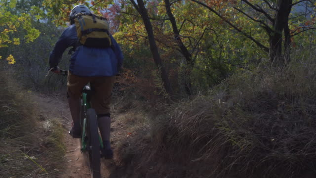 Mountain biker races along dusty forest trail