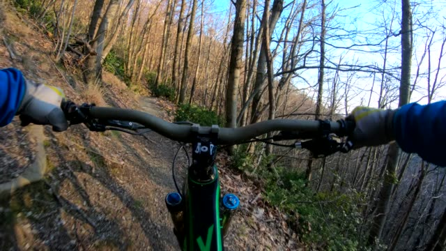 Mountain biker rides along forest trail, winter
