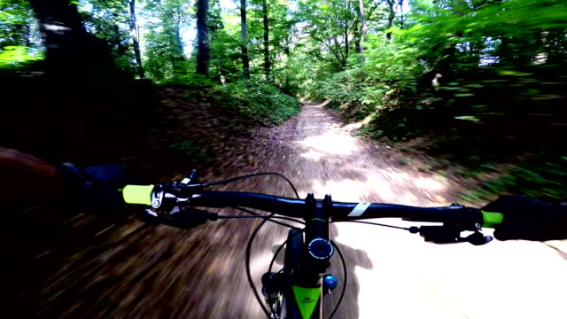 mountain biker riding a bike on forest dirt trail - recreational horseback riding stock videos and b-roll footage
