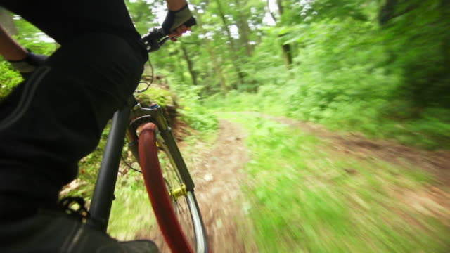 pov mountain biker riding downhill in green forest - mountain bike stock videos & royalty-free footage