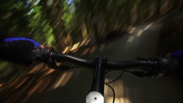 pov mountain biker riding downhill in green forest - mountainbike stock-videos und b-roll-filmmaterial