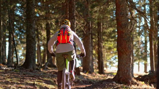 slo mo mountain biker riding his bike up the forest trail in sunshine - nur junge männer stock-videos und b-roll-filmmaterial