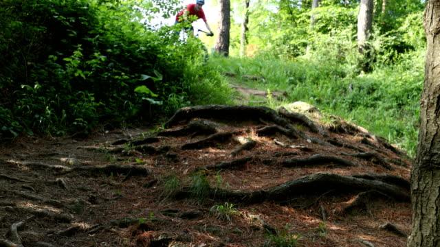 Mountainbiker fährt auf Waldbahn