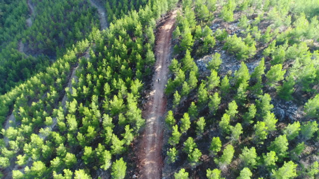 vidéos et rushes de mountain biker à cheval sur une photographie vue aérienne de chemin de terre - vtt