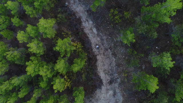 Mountain Biker Riding on a dirt road aerial view photography