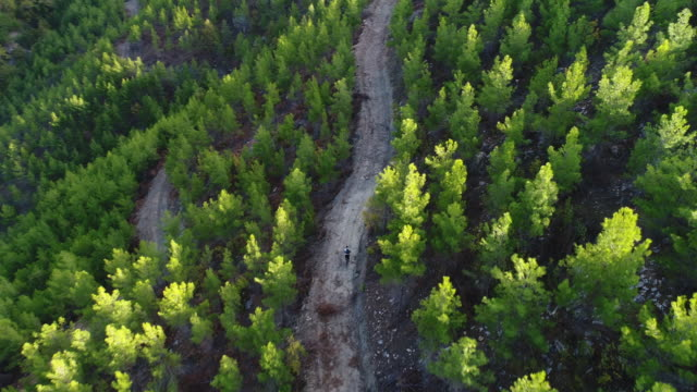 mountain biker riding on a dirt road aerial view photography - mountain bike video stock e b–roll