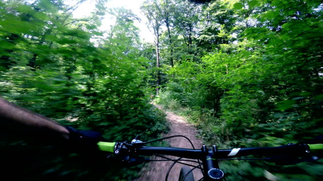 mountain biker riding on bike on forest dirt trail - recreational horseback riding stock videos and b-roll footage