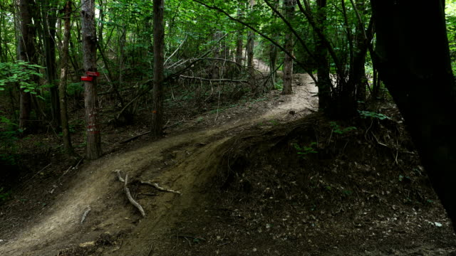 mountain biker riding on forest trail - off road racing stock videos & royalty-free footage