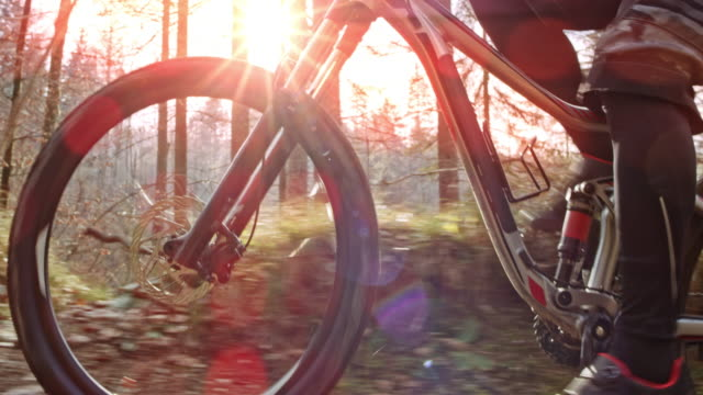 TS Mountain biker riding up a trail in a forest with sun shining in the background