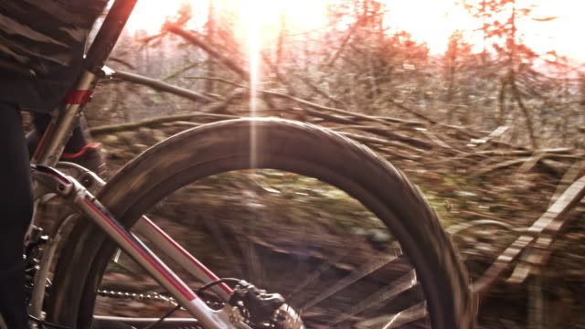 ts mountain biker riding up the hill on a forest trail with autumn sun shining in the background - mountain biking stock videos & royalty-free footage