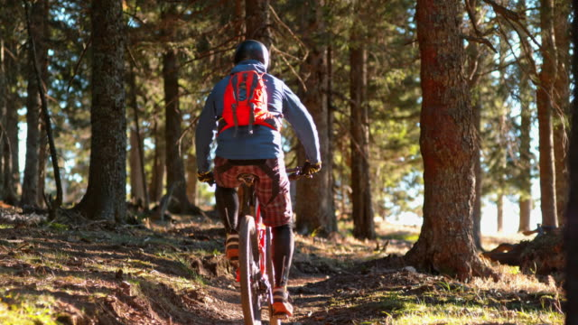 slo mo mountain biker riding up the sunny forest trail - nur junge männer stock-videos und b-roll-filmmaterial