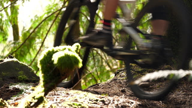 vidéos et rushes de cu mountain biker taking evening ride on forest trail - faire du vélo tout terrain