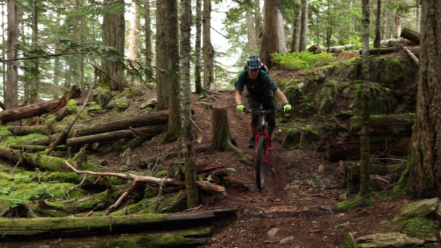 mountain biker traverses forest trail, on narrow path - mountain biking stock videos & royalty-free footage