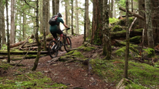 mountain biker traverses forest trail, on narrow path - andare in mountain bike video stock e b–roll