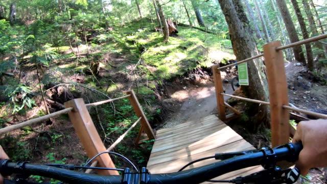vídeos de stock, filmes e b-roll de o motociclista da montanha atravessa a fuga da floresta com agilidade - mountain bike ciclismo