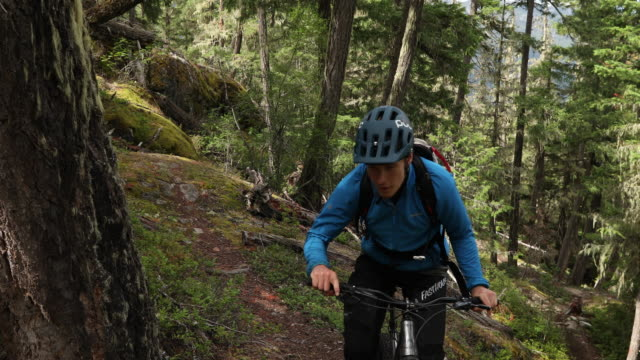 mountain biker traverses forest trail with speed - geographical locations stock videos & royalty-free footage