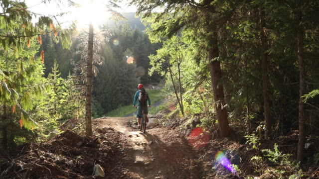 mountain biker traverses trail through mountain forest - full length stock-videos und b-roll-filmmaterial