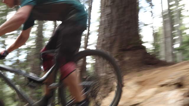 mountain biker traversing trail through forest - ascentxmedia stock videos & royalty-free footage