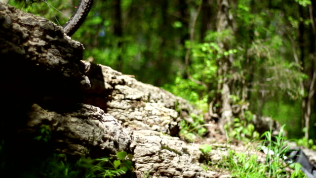 mountain biker - tyre stock videos & royalty-free footage