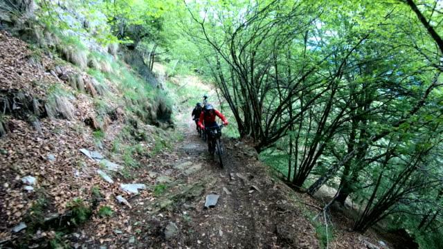 Les vététistes monter versant lumineux vert forêt