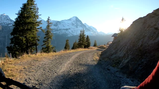 mountain bikers descend through alpine meadows - videocamera indossabile video stock e b–roll