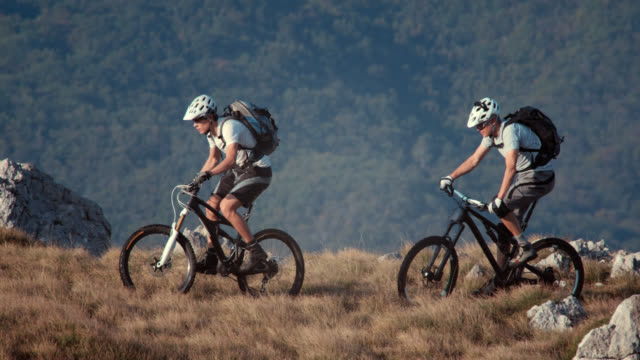 Mountain bikers on the hill top