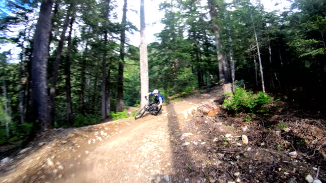 mountain bikers race down forest track - bicycle trail outdoor sports stock videos & royalty-free footage